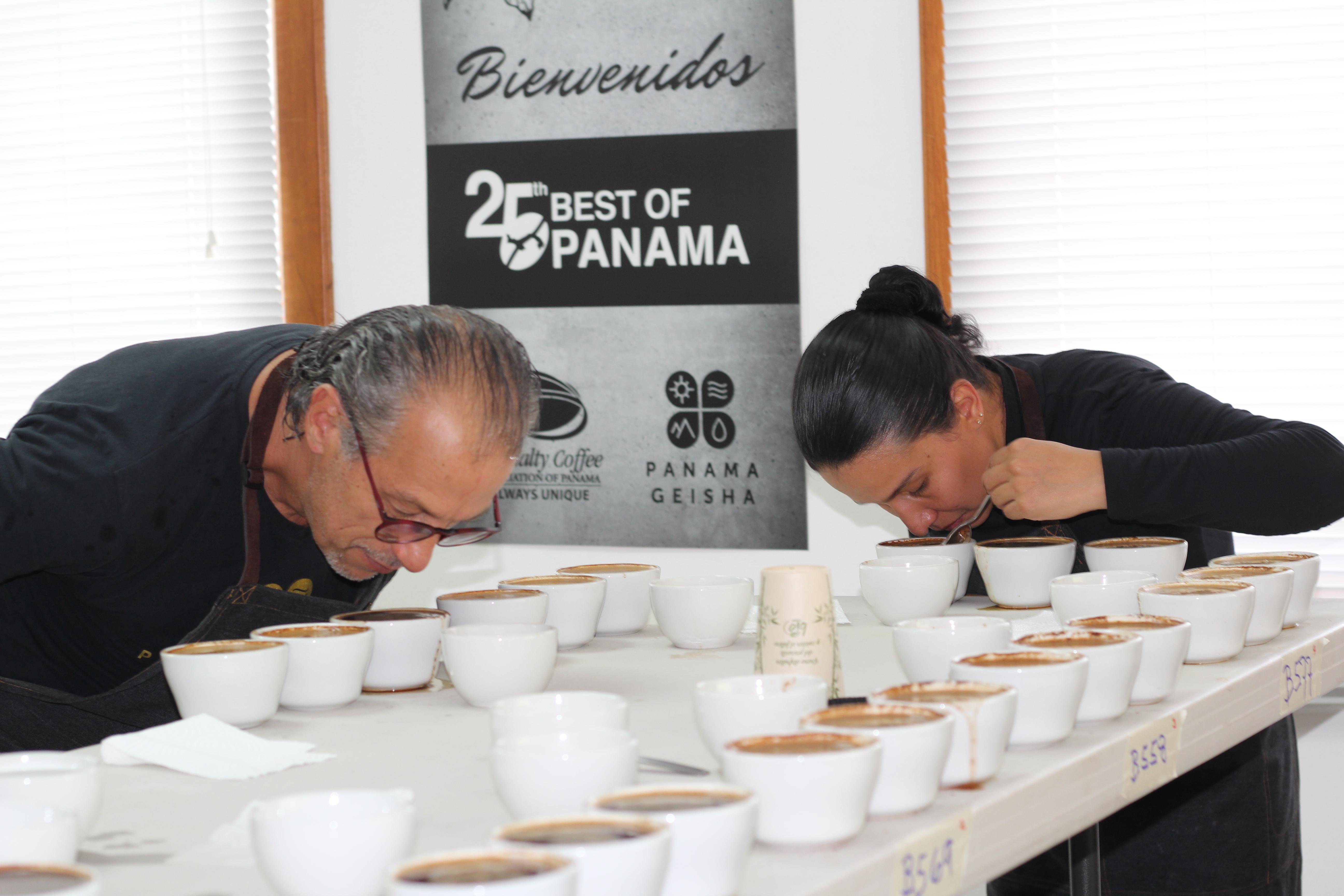 Inició Cata Nacional del Mejor Café de Panamá