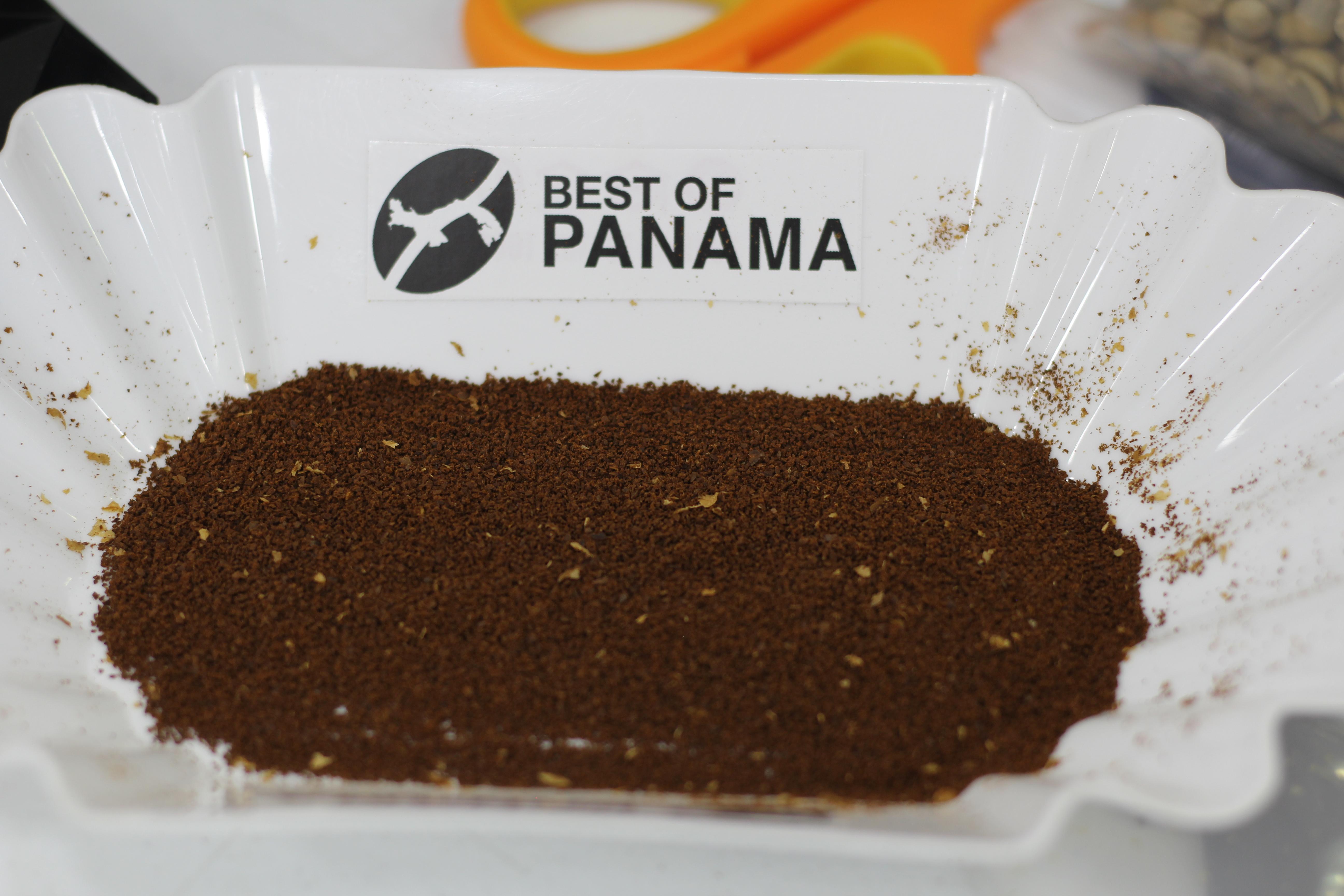 Todo listo para la Cata Nacional del Mejor Café del Mundo